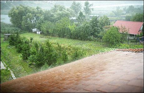 2 ploaie torentiala.jpg